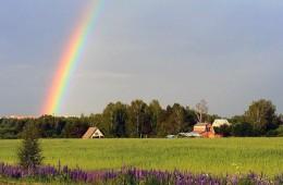 Особенности покупки земельного участка