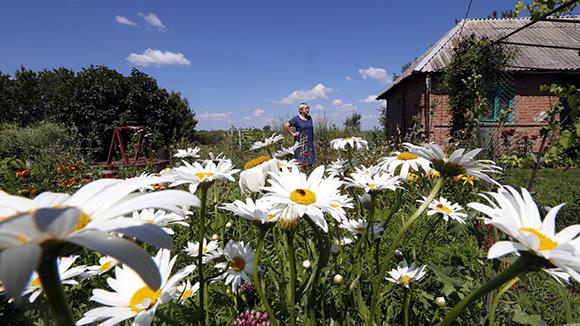 В Подмосковье ожидается распродажа загородных домов