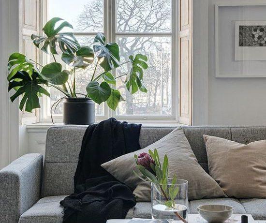 Как избавиться от запаха новой мебели
