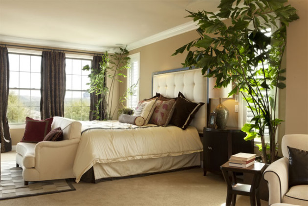 Какие комнатные цветы используют для оформления интерьера спальни?