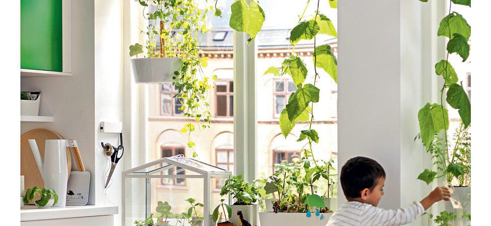 10 идей декора окна