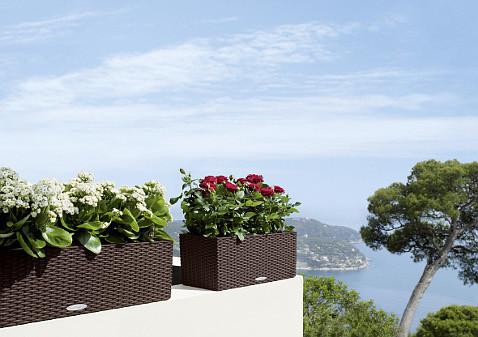 Украшение интерьера — стильные цветочные горшки от Lechuza