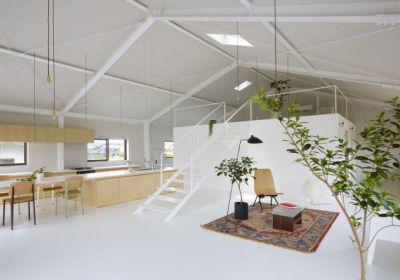 Новый облик дома