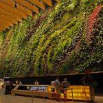 Оригинальные и красивые вертикальные сады