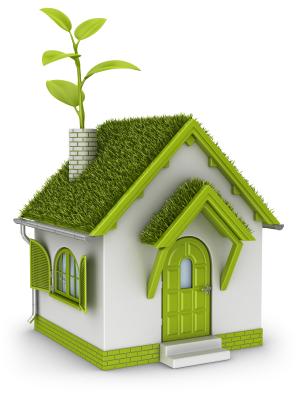 Выбираем «зелёную крышу»