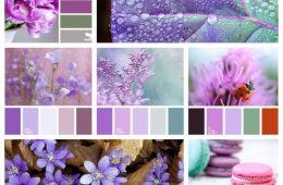Колорирование красок: как получить нужный оттенок?